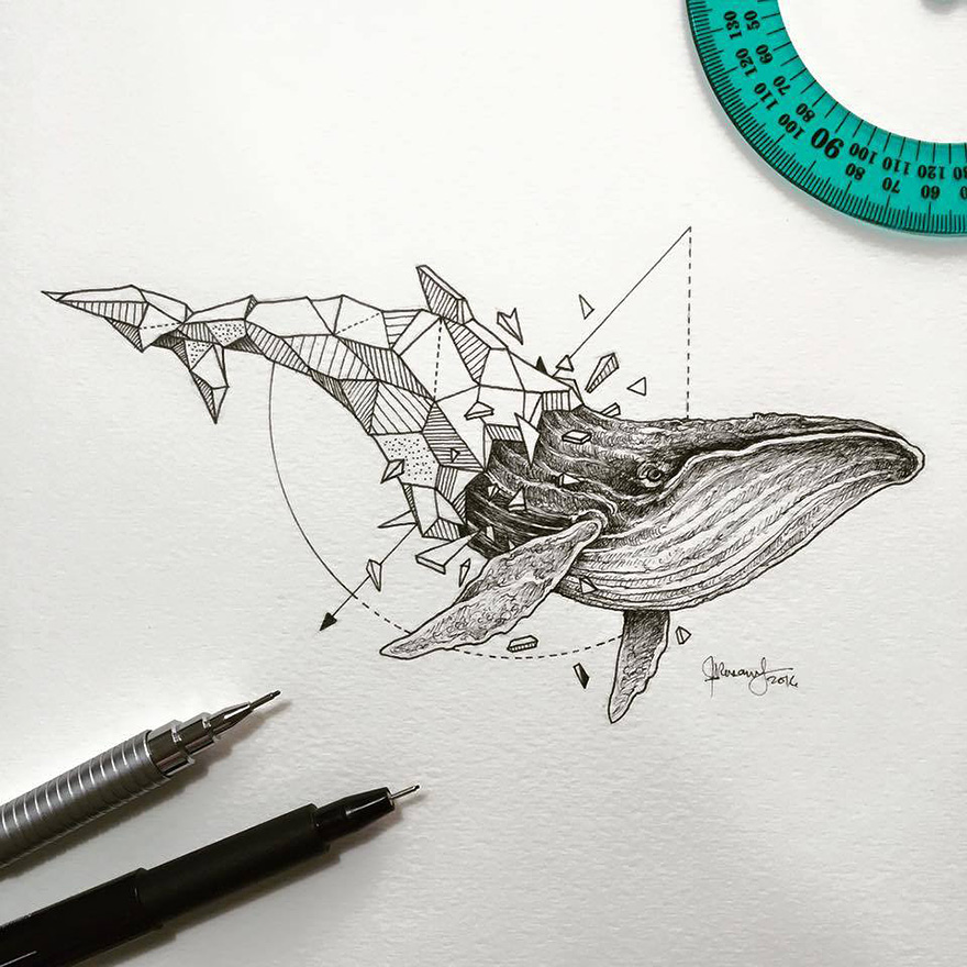 geometric-animal-drawings-wild-beasts-illustrations-kerby-rosanes-16__880