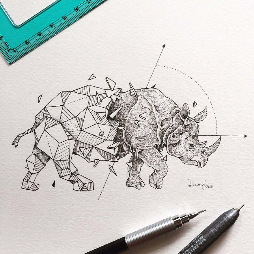 geometric-animal-drawings-wild-beasts-illustrations-kerby-rosanes-19__880