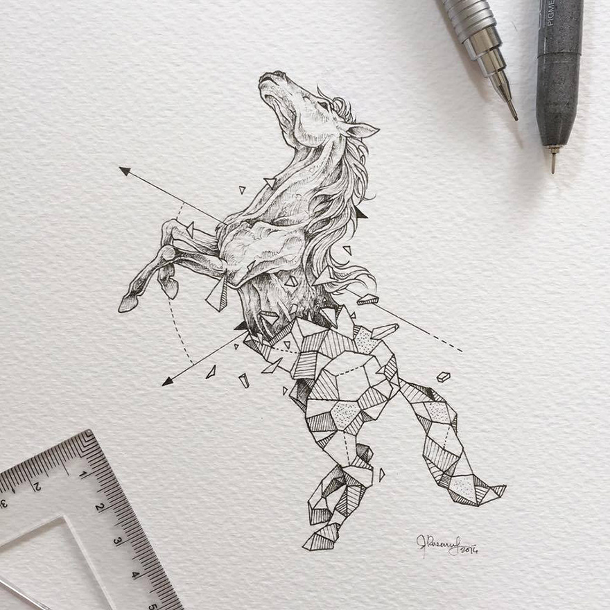 geometric-animal-drawings-wild-beasts-illustrations-kerby-rosanes-22__880