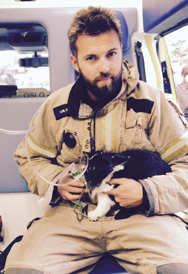 firefighters-rescuing-animals-saving-pets-53-5729f7ab66373__605